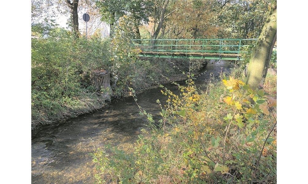 Die unter anderem durch Heeßen (unser Bild) fließende Bückeburger Aue könnte in verschiedenen Bereichen naturnäher gestaltet werden. Foto: wk