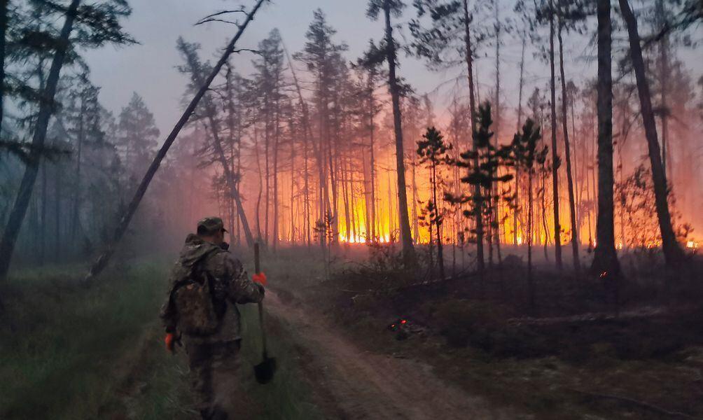 Umweltschützer: Waldbrände in Russland - historisches Ausmaß